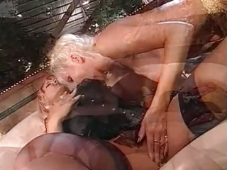 mature honeys and sex toy