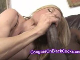 hung shaft savagely bonks hawt stacked older nina